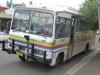 Nim Bin Bus