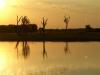 Abendstimmung in den Yellow Waters