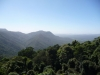 Blick vom Skywalk - Dorrigo Nationalpark